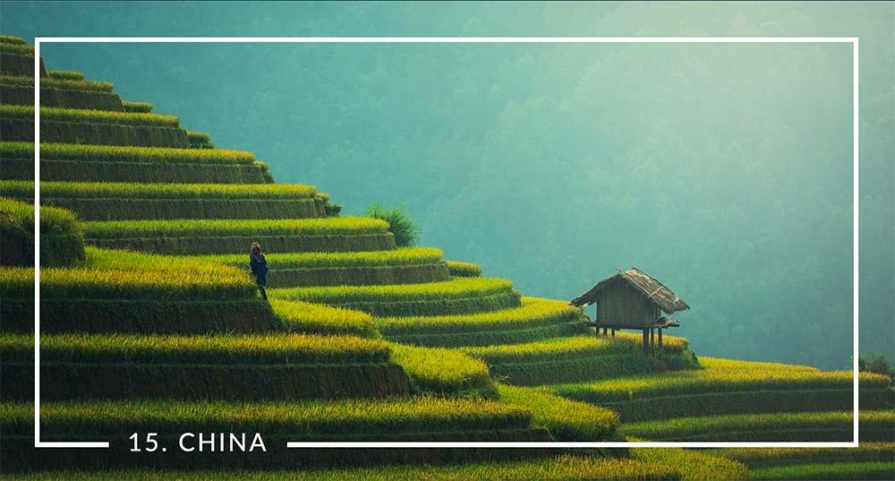 China No. 15